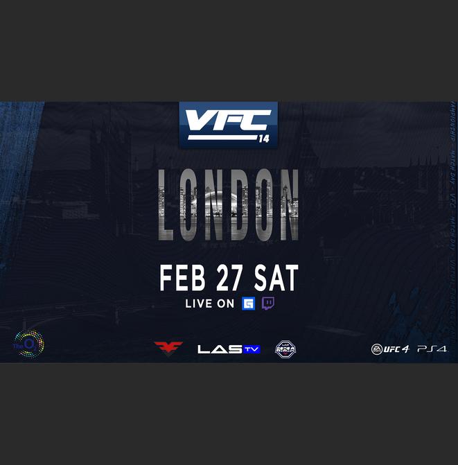 VS.UFC VFC14 (site).png