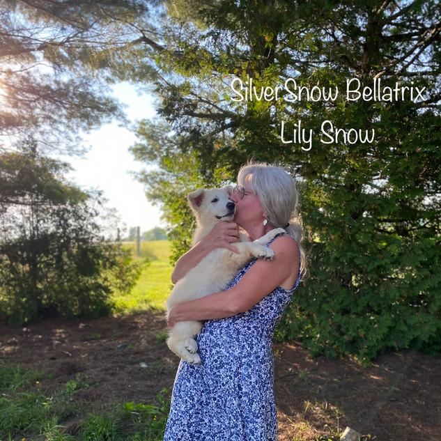 Lily Snow