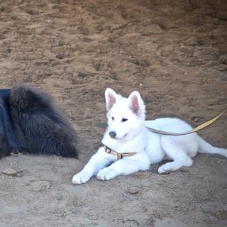 Kira et Jake