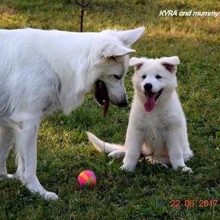 Kira avec sa maman Cocco