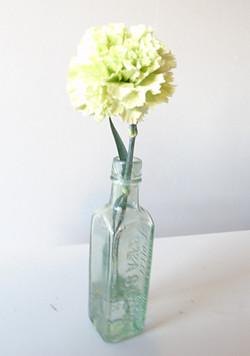 Carnation in a bottle