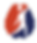 DSP Transparent Text W Logo.png