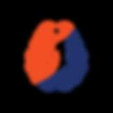 DSP Transparent Logo Color.png