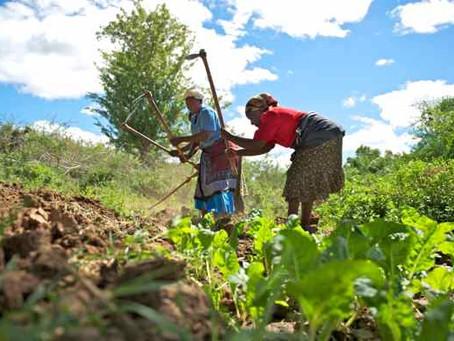 Gender Equity Issues in Kenya