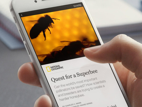 4 Reasons Why You Should Definitely Signup For Facebook Instant Articles
