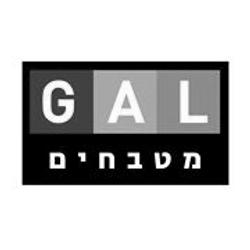 Gal logo