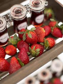 Winter Wedding Styled Shoot Strawberries