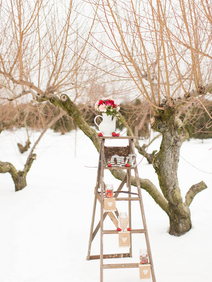 Winter Wedding Styled Shoot Ladder.png