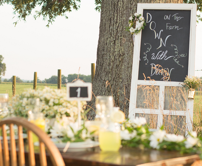 Rustic Farm Table Spring Wedding with Vi