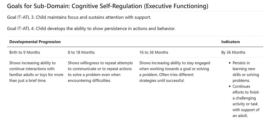Cognitive Self Regulation (Executive Fun