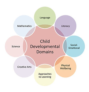 Child Development Domains