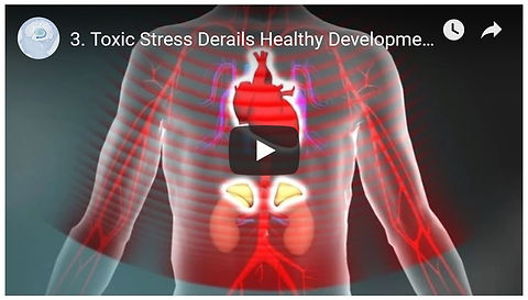 Toxic Stress Derails Brain Development 3