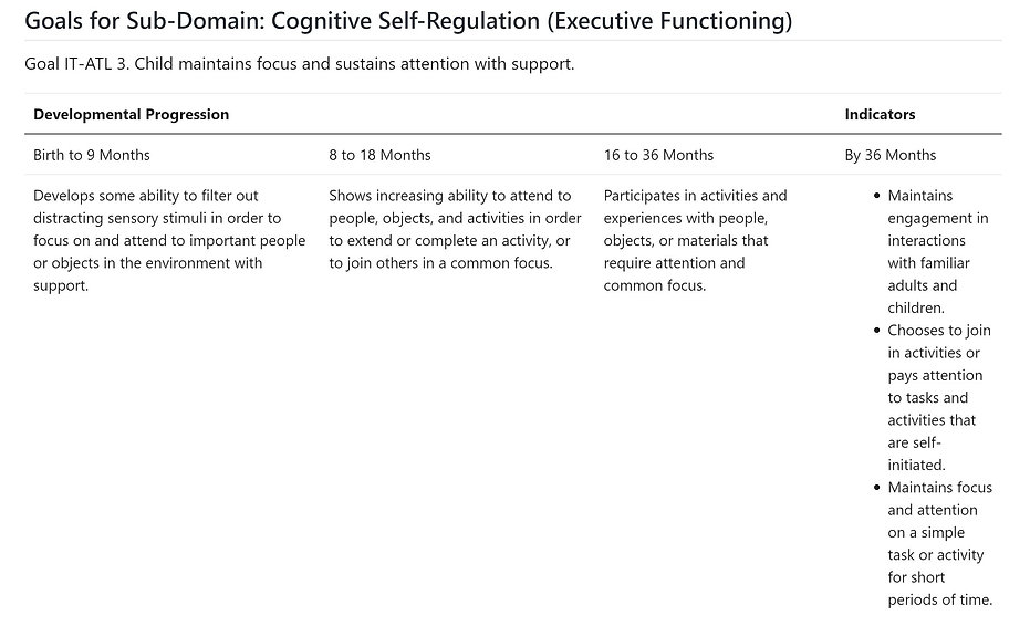 Cognitive Self Regulation-Executive Function