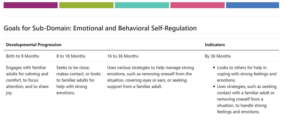 Emotional & Behavorial Self Regulation 1