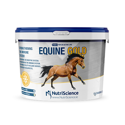 Vitamin for digestion and immunity for horses Equine Gold 1.5 Kg