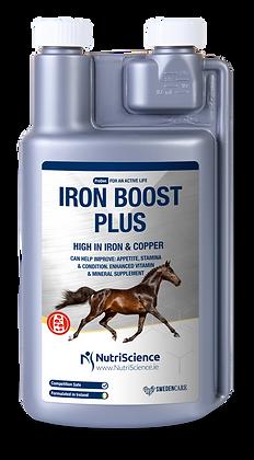 Multivitamin Supplement and Iron Boost Plus Vitamin
