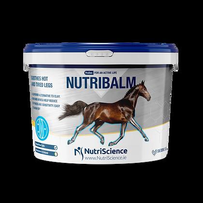 Cooling Limb Gel for Horses NutriBalm Gel