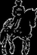 Old-Line Foundation Appaloosa Sport Horse