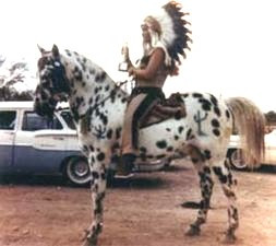 The Story of the Ghost Wind Story by Don LaLonde   Nez Perce George Long Gras   Ghostwriter Frank Scripter   Black Leopard Appaloosa   Siri Sheik
