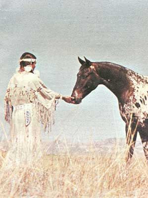 Siri Sheik | Arab Toswirah Alkhar | Jazzo | Jazzo II | Jazzbol | Appaloosa | Nimi'ipuu | Niimipu | Nez Perce | Spotted Horse | Indian Spirit Horse | Ghost Wind Horses | Appaloosa Old-Line | Appaloosa Foundation | Appaloosa Sport Horse | Palouse Horse | Palus | Pelouse | Palouse | Palousy | A Palouse | Apalouse | Apalousie | Apalousy | Apalousey | Appaloosey | Appaloosa | Palouse River | Palouse People | Appaloosa Horse Club |