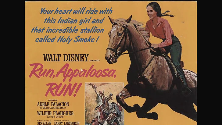 Appaloosa | Appaloosa Old-Line | Appaloosa Foudation | Spotted Horse | Nez Perce | Chief Joseph | Maamin | Appaloosa | Appaloosa Old-Line | Appaloosa Foudation | Spotted Horse | Nez Perce | Chief Joseph | Maamin |