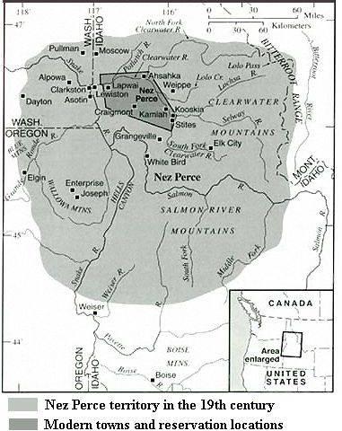 Nez Perce Horse, Palouse Horse, Maamin, Spotted Horses
