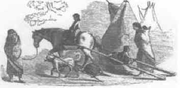 Palouse Horse | Palus | Pelouse | Palouse | Palousy | A Palouse | Apalouse | Apalousie | Apalousy | Apalousey | Appaloosey | Appaloosa | Palouse River | Palouse People | Appaloosa Horse Club | Appaloosa | Nimi'ipuu | Niimipu | Nez Perce | Spotted Horse | Indian Spirit Horse | Ghost Wind Horses | Appaloosa Old-Line | Appaloosa Foundation | Appaloosa Sport Horse