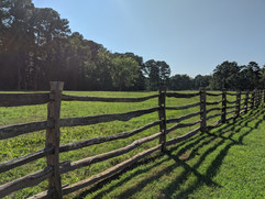 Willow Creek Views