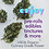 Thumbnail: CBD Hemp Flower Culinary Grade