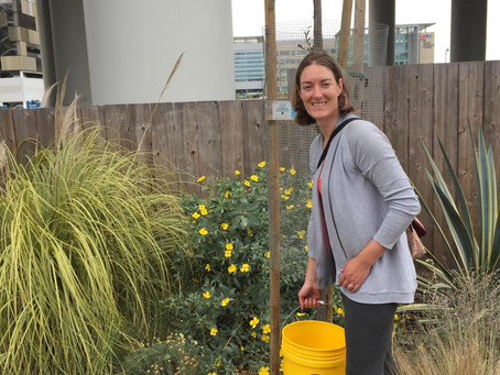 Meet Our Head Gardener, Emily