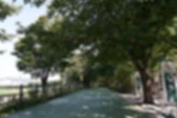 공원01.jpg