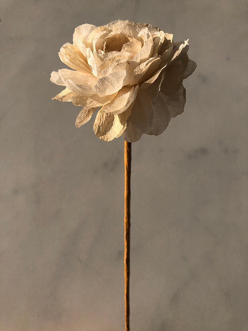 Fleurs en papier faites à la main - Renoncule teintée Marc de café