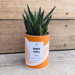 "Plante en pot ""Maman chérie"" Ay Cactus"