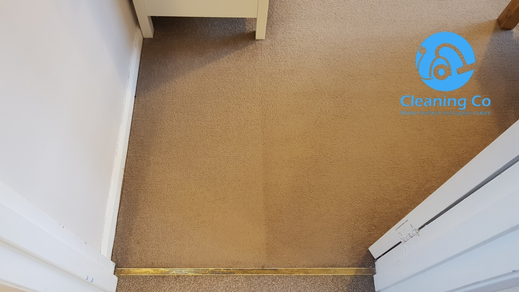 carpet cleaning newtonabbey