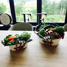 Récoltes du jour pour le restaurant