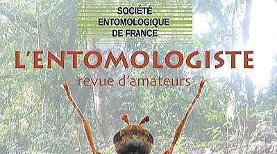 Deuxième volet : les Odonates de São Tomé et Príncipe pour l'Entomologiste