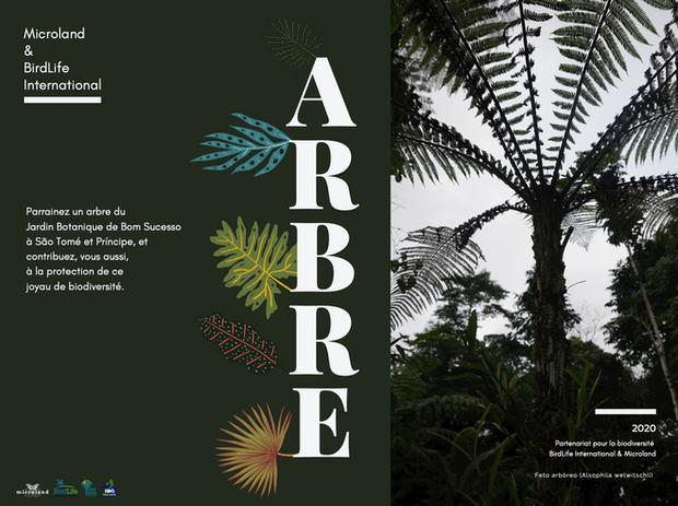 """Notre catalogue """"Parrainez un arbre"""" du Jardin Botanique de Bom Sucesso"""