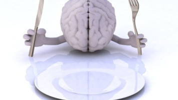 Eating Breakfast Increases Brain Chemical Involved in Regulating Food Intake and Cravings, MU Resear