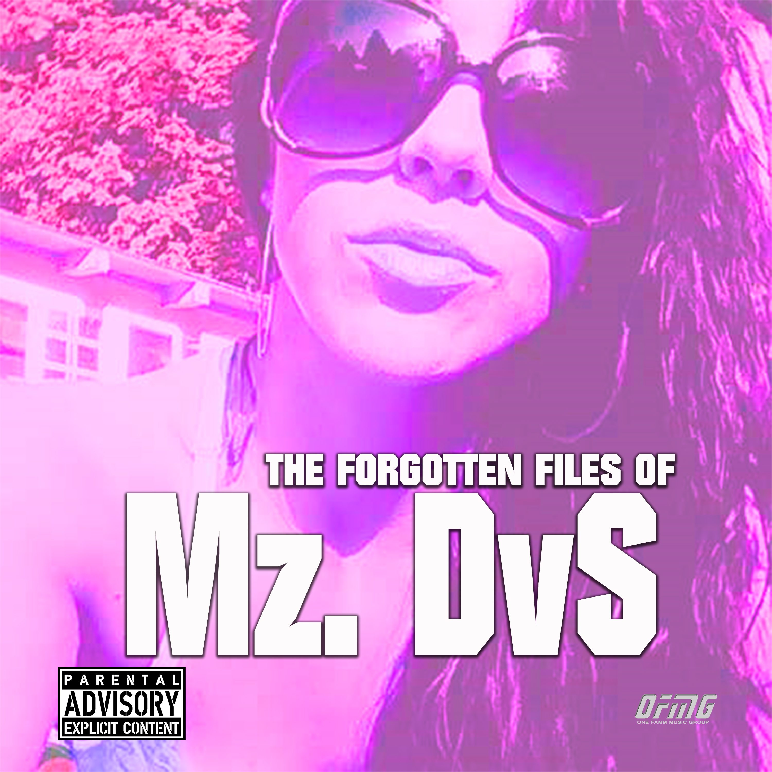 The Forgotten files of DvS