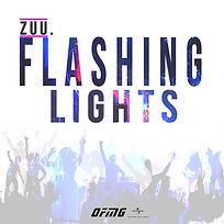 flashing  lights cover artwork.jpg