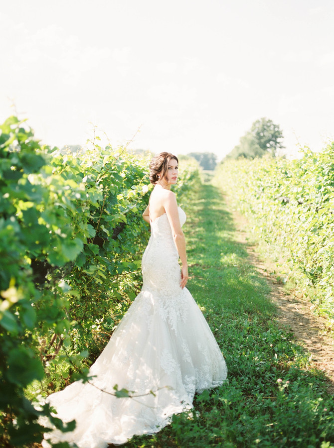 Blue Vineyard Wedding Inspiration at Burning Kiln Winery