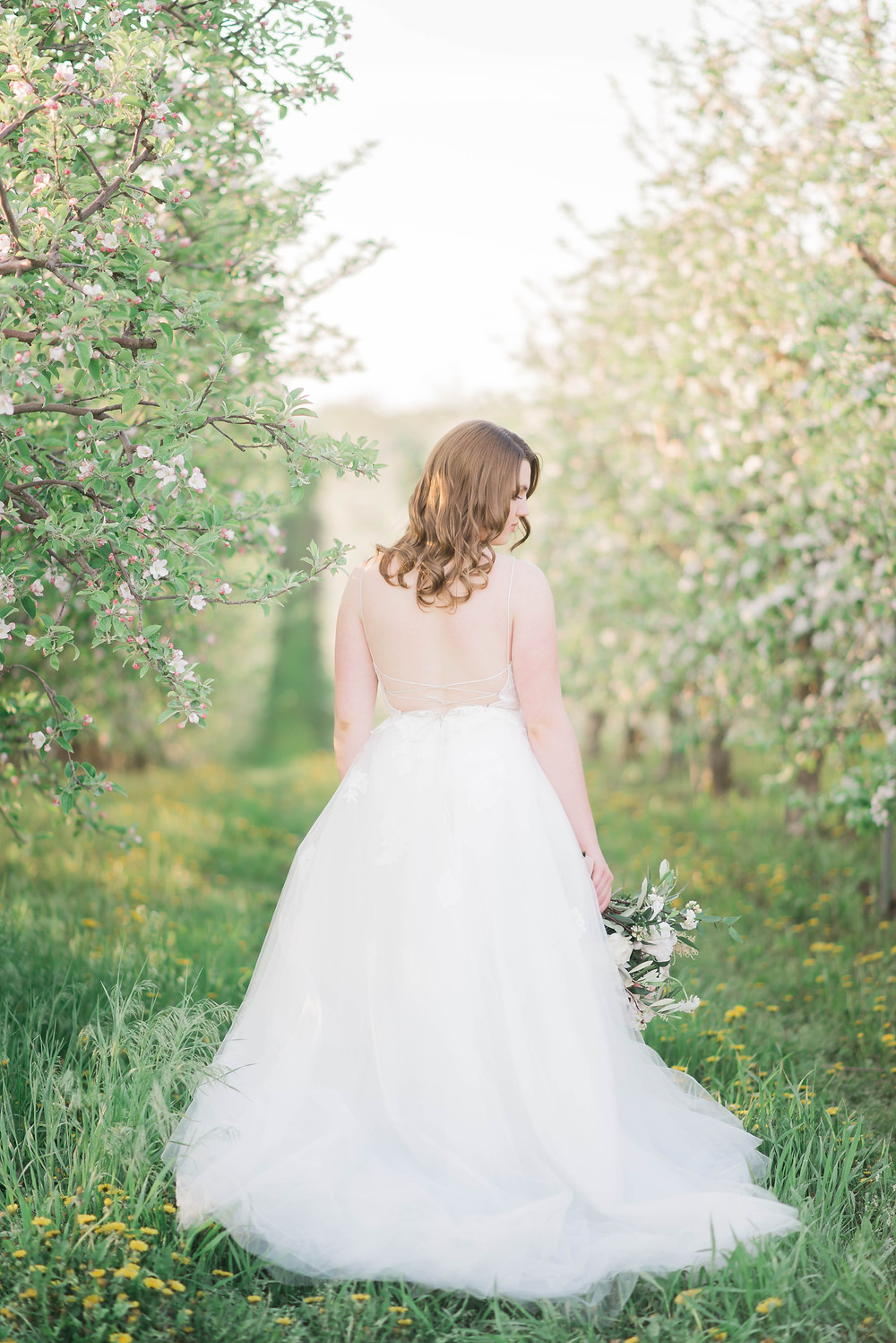 apple blossom bridal shoot