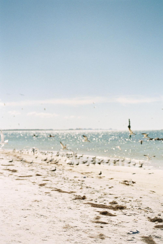 honeymood island beach