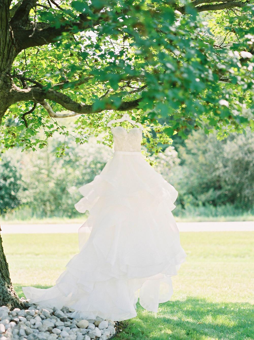 Wedding dress picutres