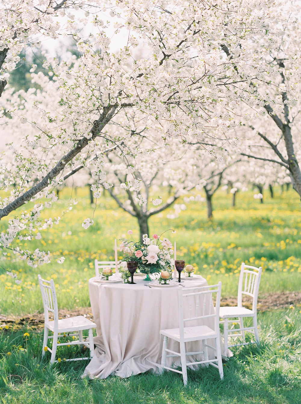 cherry blossom wedding