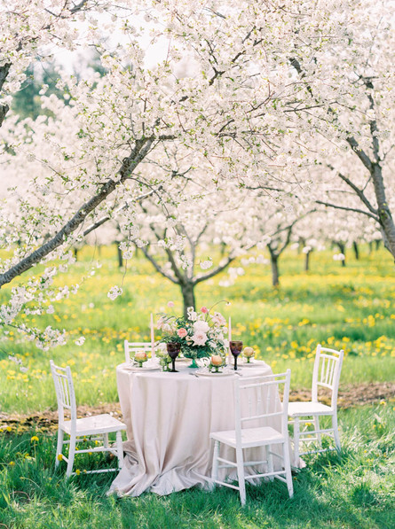 top-toronto-wedding-photographers