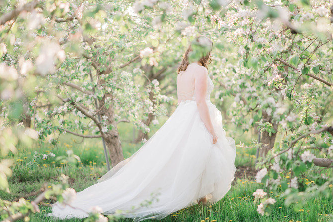 Cherry Blossom Wedding Inspiration [Orchard Wedding][Spring Wedding Inspiration]