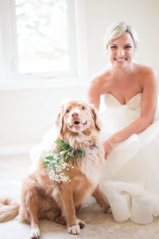 flower girl dog wedding