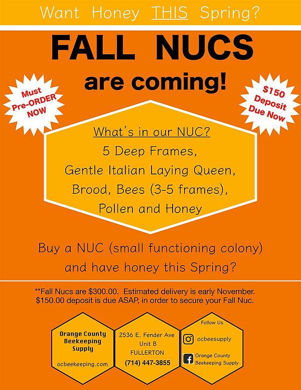 NUC-flyer.jpg