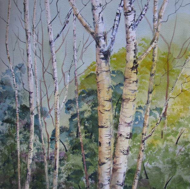 Birch Woods by Marilyn Flanagan